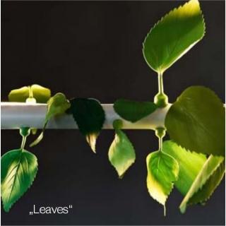 """Leaves: 30 magnetisch haftende """"leaves"""""""