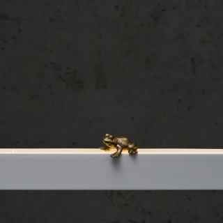 Frosch in gold