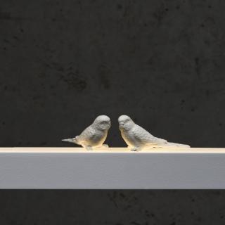 Vögel in weiß