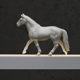 Pferd in weiß