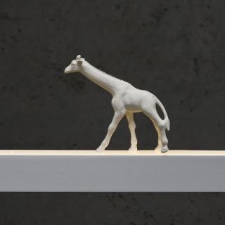 Giraffe in weiß
